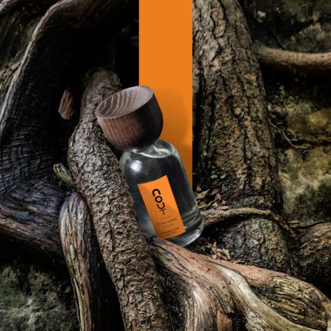 davana sauvage - Nout parfum