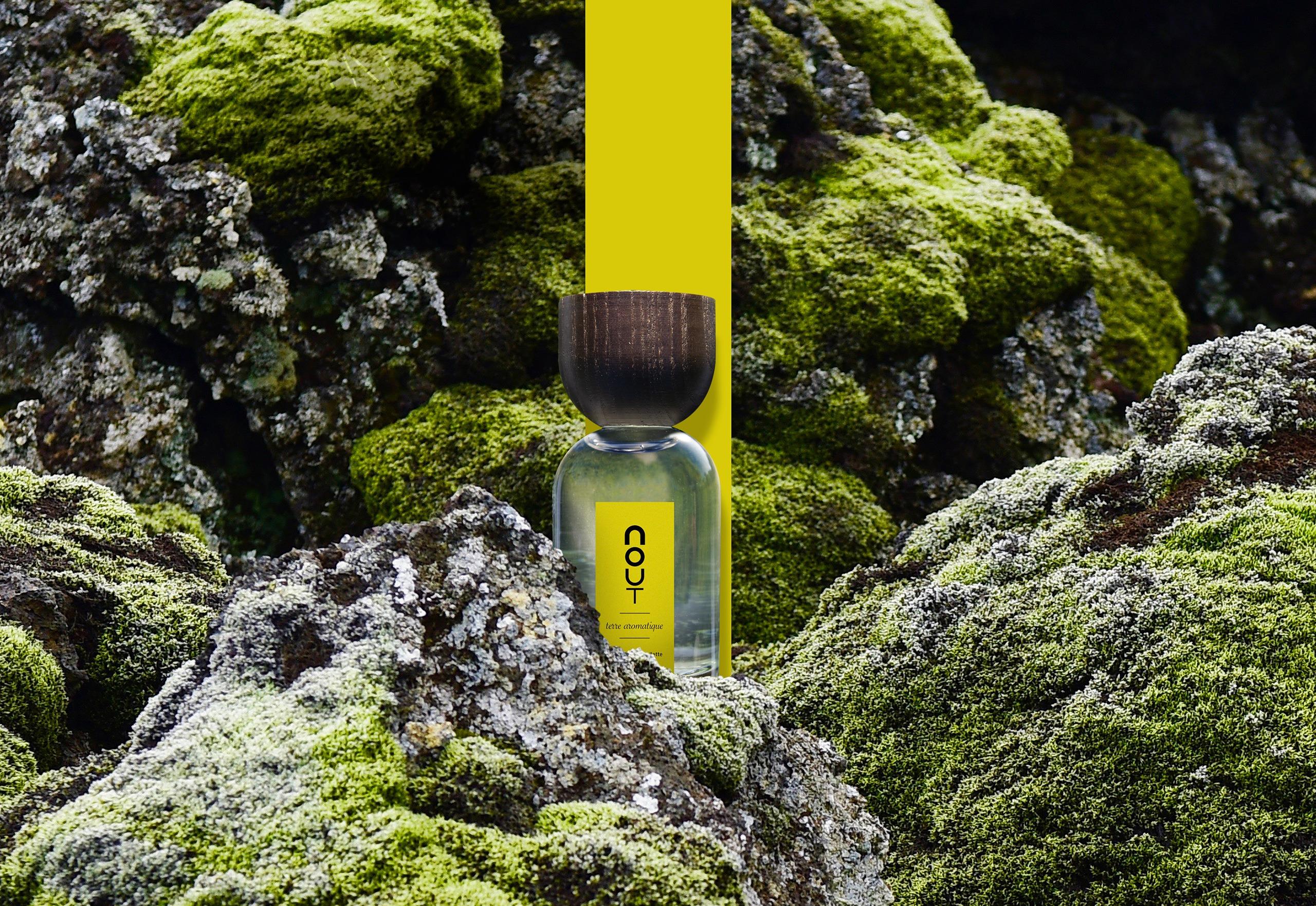 terre aromatique - Nout parfum
